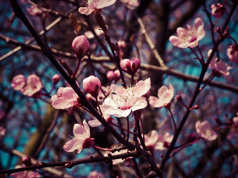 Kiedy ta wiosna? ;)