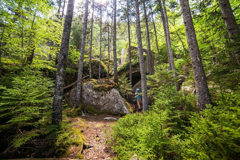Beskidzkie i pienińskie szlaki przejdą lifting