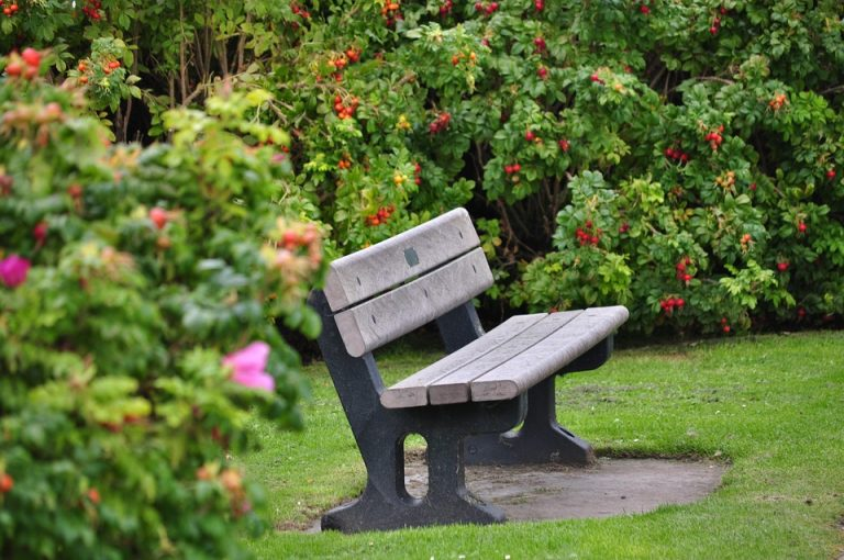 Nowy Sącz: zbierz sąsiadów i stwórzcie osiedlowy ogród za pieniądze z zielonej ławeczki