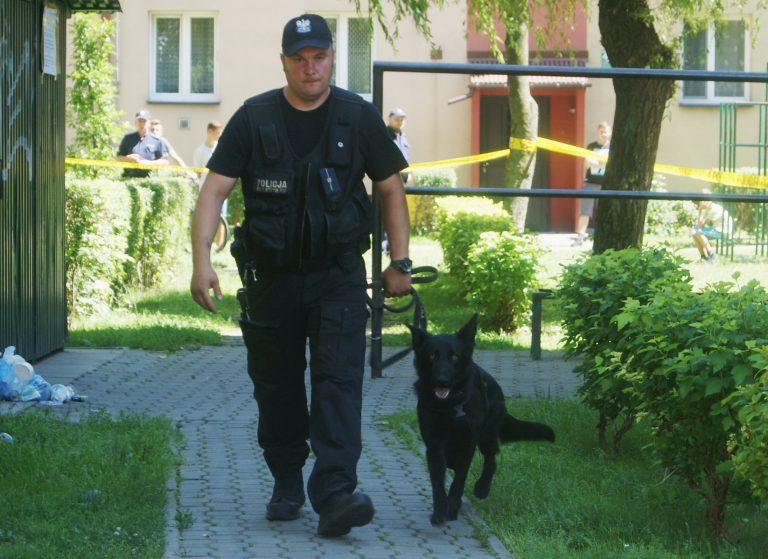 Nowy Sącz, Barskie: Harry nie siadł, bomby nie ma