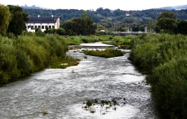 """Nowy Sącz: władze miasta upominają się o """"odkrzaczenie"""" Kamienicy"""