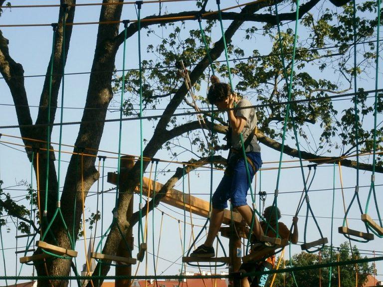 Stary Sącz: kradzież w Parku Linowym. Złodzieje wynieśli sprzęt wspinaczkowy