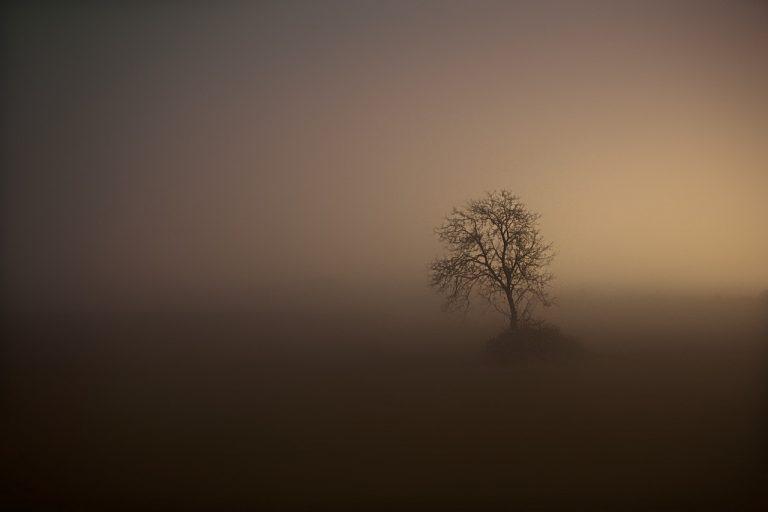 Dziś w nocy widoczność na drogach może być mocno ograniczona z powodu mgły