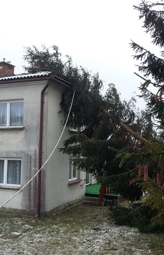 UWAGA: Miej się na baczności! Ten wiatr może być groźny
