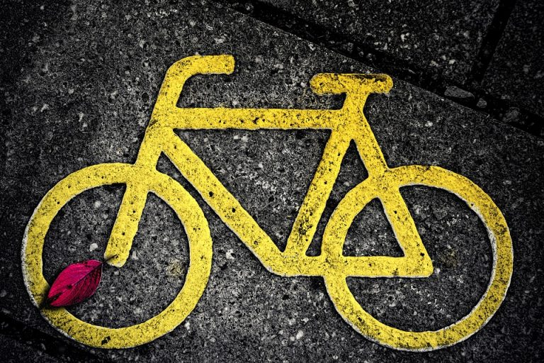 Krynica Zdrój – Muszyna: 12 kilometrów ścieżki rowerowej już w tym roku