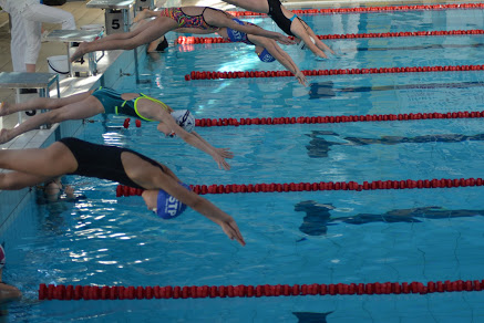 Grad medali nowosądeckich pływaków! 31 krążków!