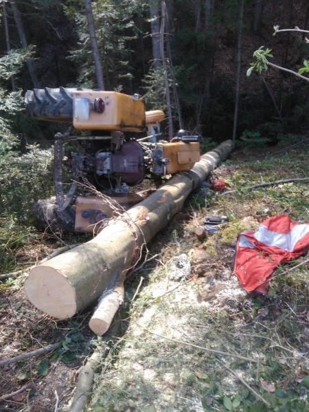 Tragedia w lesie w Olszance: ciągnik zmiażdżył człowieka