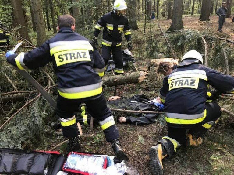 Ćwiczenia w Lipnicy Wielkiej: harcerze przygnieceni przez drzewa podczas gwałtownej burzy