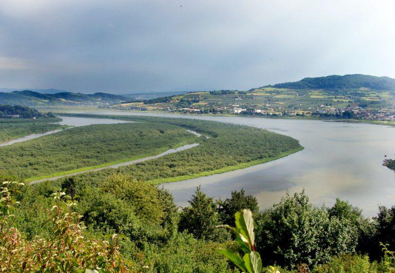 Jezioro Rożnowskie… znika