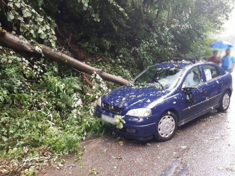 Nawałnica powaliła drzewa. Jedno spadło na samochód