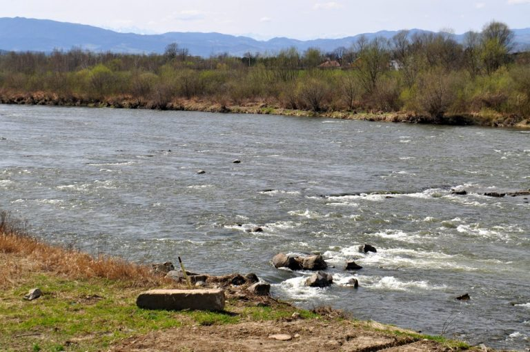 Dwaj bracia przyłapani nad Dunajcem na gorącym uczynku
