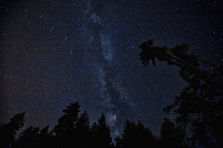 Pochodzą z komety, która kiedyś może uderzyć w Ziemię. W sobotę zobaczysz je na niebie