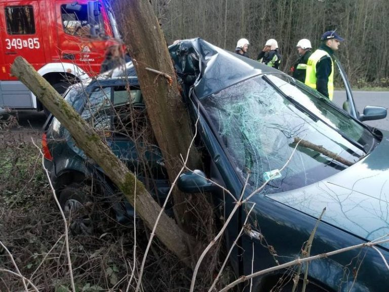 Straciła panowanie nad pojazdem i uderzyła w drzewo