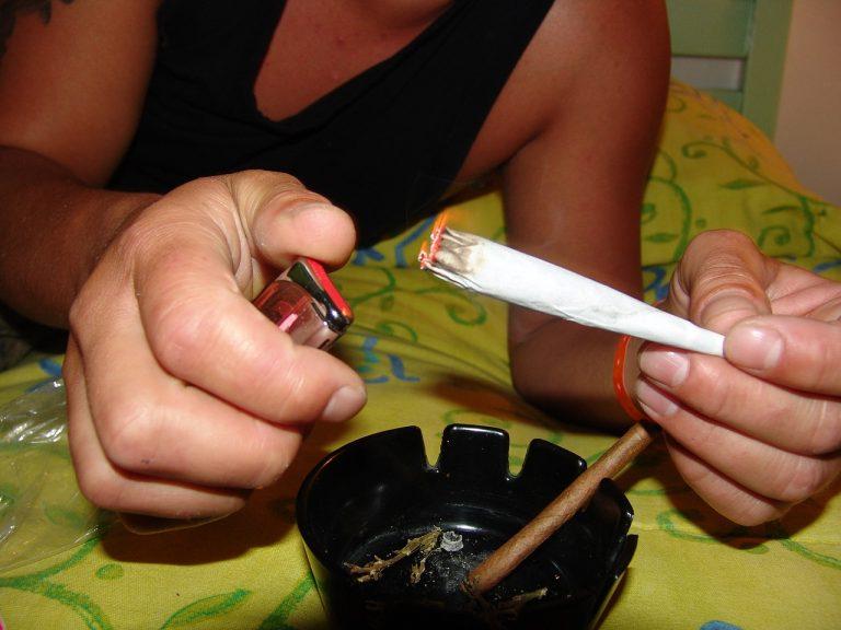 Hodowali marihuanę i sprzedawali ją nieletnim. Plantację odnaleźli policjanci