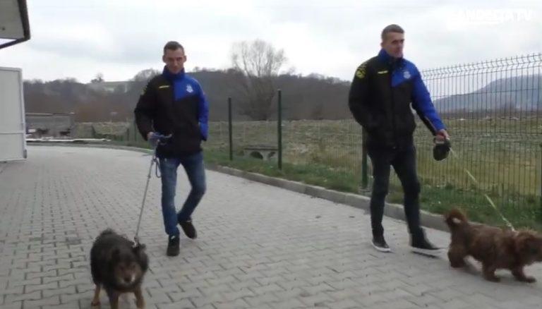 Piłkarze Sandecji z wizytą w schronisku [Wideo]