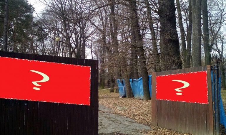 Nowy Sącz: plaga przetargów – niewypałów