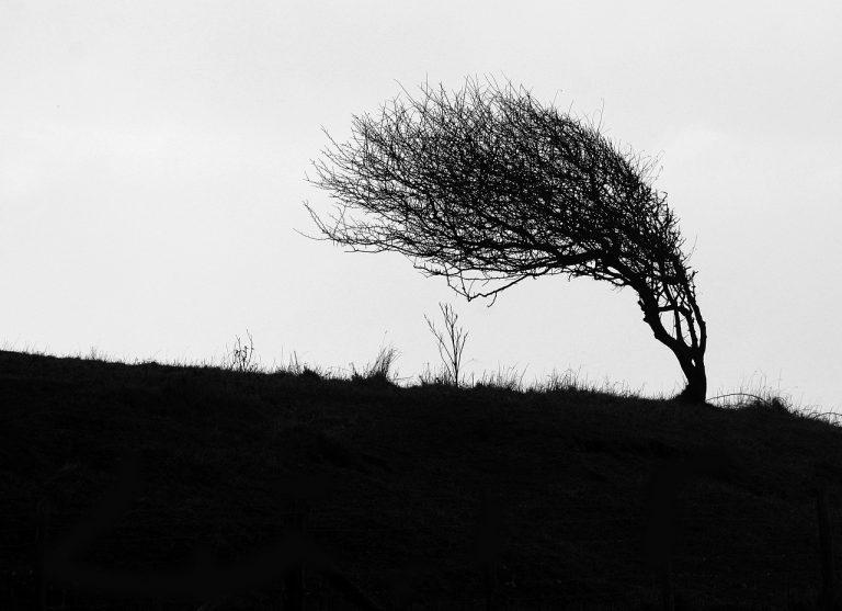 Wiatr zawieje z prędkością do 110 km/h. Może też zagrzmieć [film]