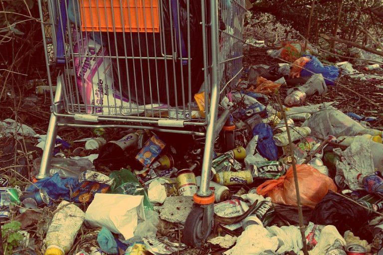 Nowy Sącz: znalazłeś dzikie wysypisko lub walające się śmieci? Zgłoś to!