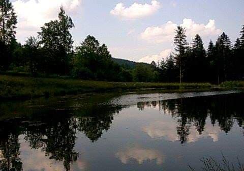 Sądecka Mapa Rowerowa III: wycieczka do tajemniczego jeziora w środku lasu (12)