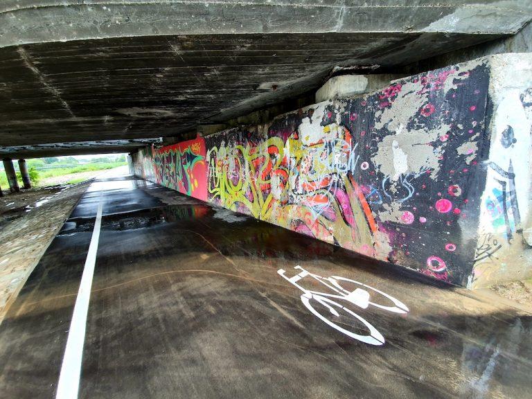Pięć kilometrów radości i integracji pieszych z cyklistami