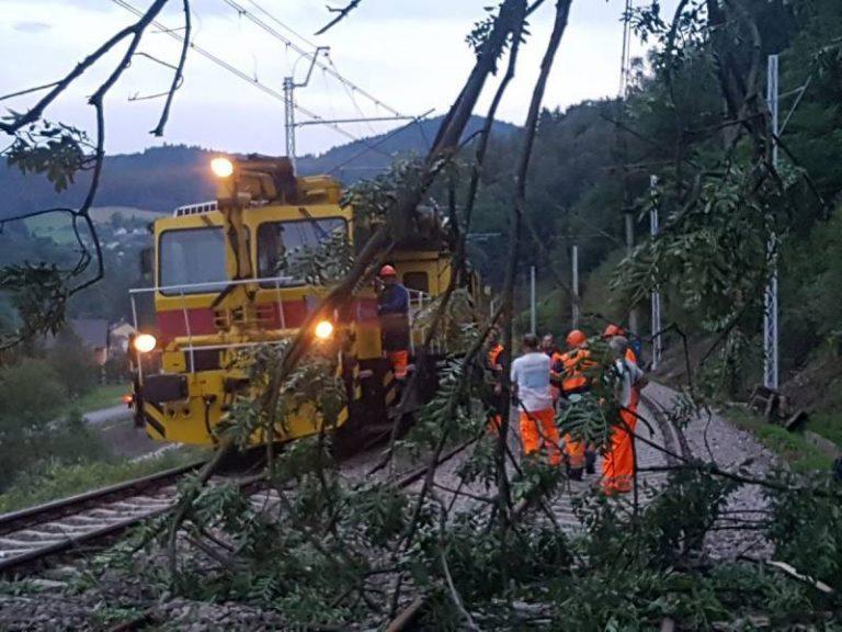 Drzewo powalone na trakcję stwarzało zagrożenie dla pociągów