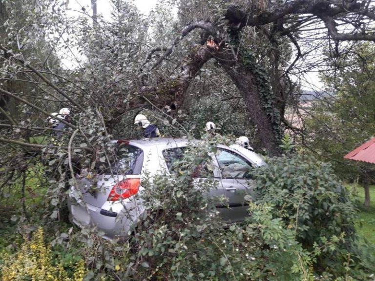 Mostki: samochód osobowy uderzył w drzewo