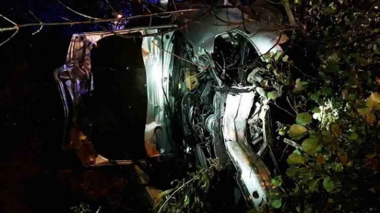 Nowy Sącz: ranni mężczyźni, zniszczone Audi, złamane drzewo i słup…