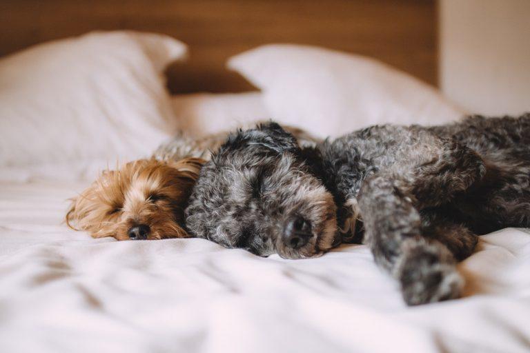 Dobra wiadomość: dziś w nocy możemy spać godzinę dłużej