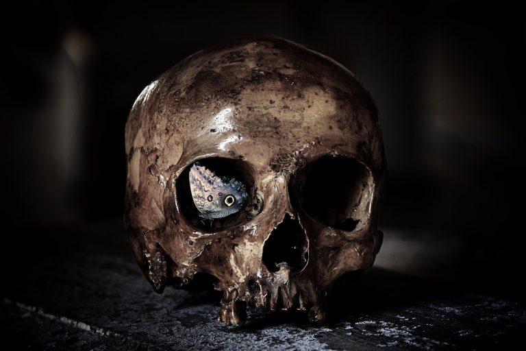 Z ostatniej chwili: przy ul. Jagiellońskiej znaleziono ludzkie szczątki