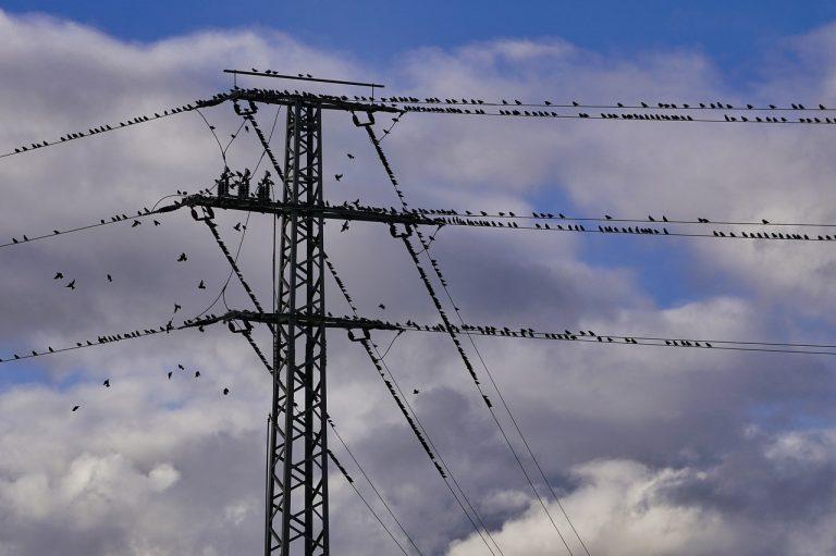 Będą przerwy w dostawie prądu. Lista dla Nowego Sącza i trzech powiatów