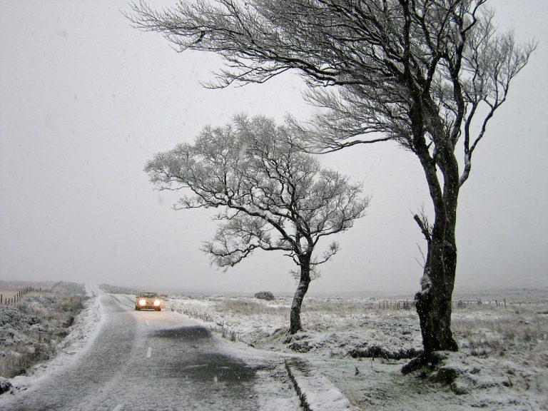 UWAGA: POGODOWY ALERT! będzie mocno wiało. Możliwe burze i opady deszczu oraz śniegu