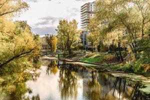 Park - M, Nabrzeże rzeki Oławy, Wrocław