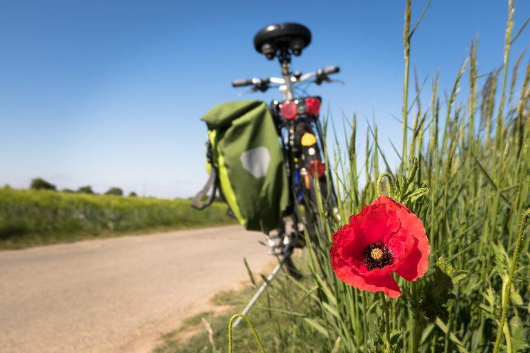 Straż Graniczna przypomina: piesza i rowerowa wycieczka na Słowację cały czas może skończyć się kwarantanną