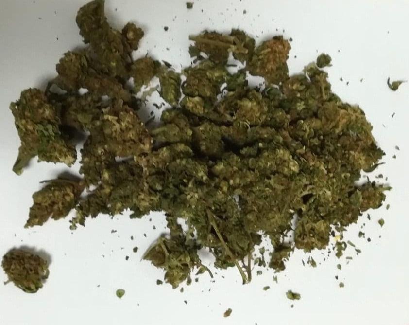 Tęgoborze: w lesie w okolicy domu uprawiał marihuanę