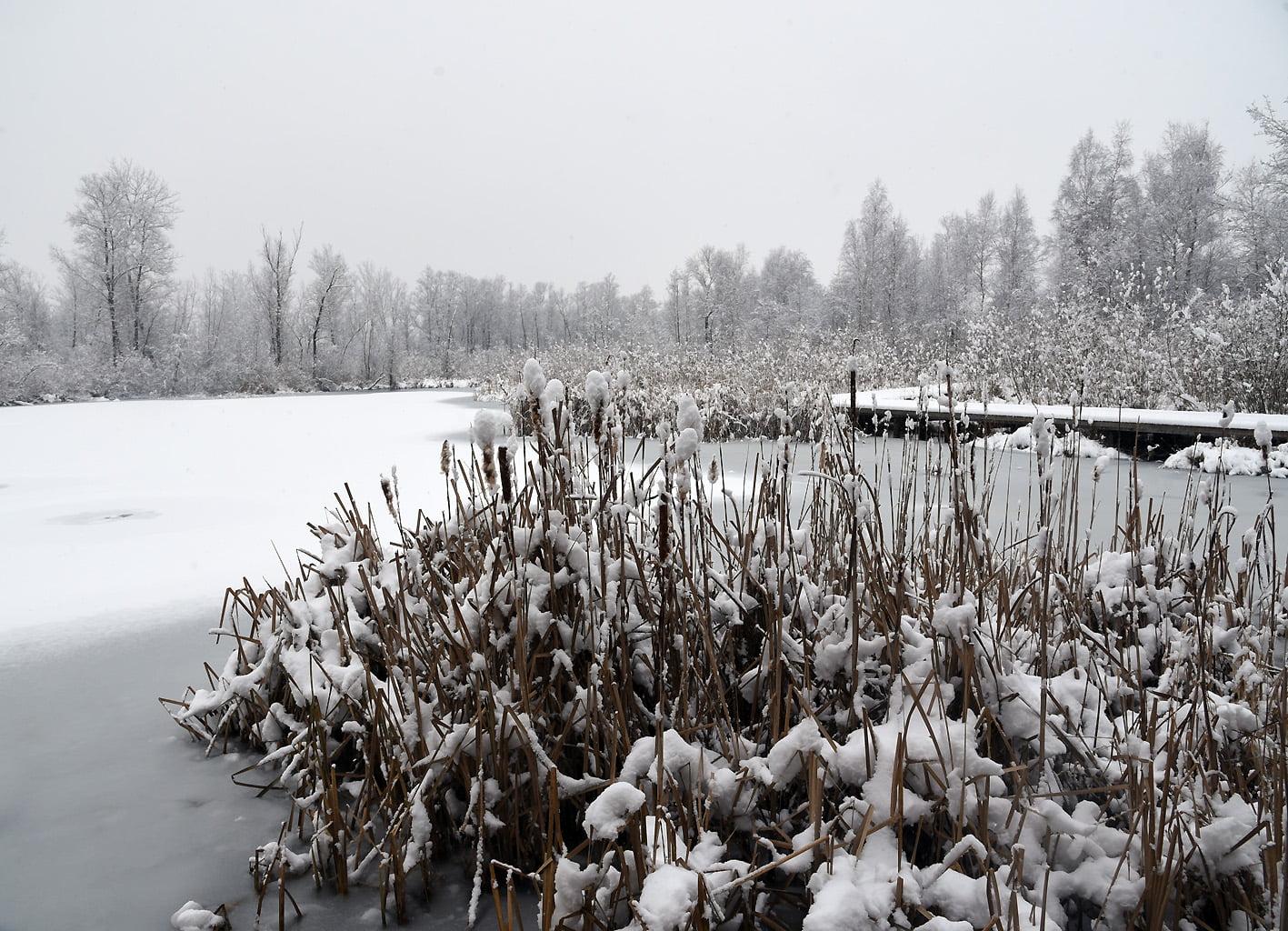 Baśniowy świat Bobrowiska [zdjęcia]