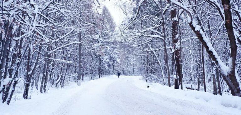 UWAGA! Nadciągają śnieżyce. Podróż autem może być trudna i niebezpieczna