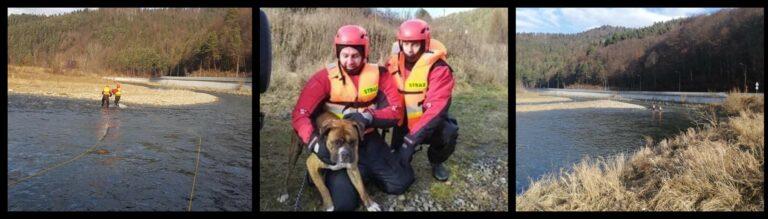 Piwniczna-Zdrój. Strażacy i goprowcy uratowali psa, którego spłoszyły fajerwerki