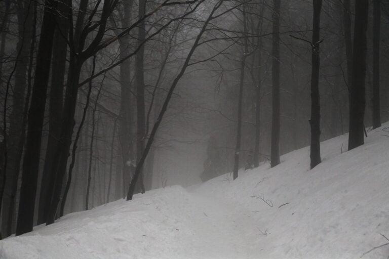 Laskowa. Zgubił się w lesie i leżał przysypany śniegiem