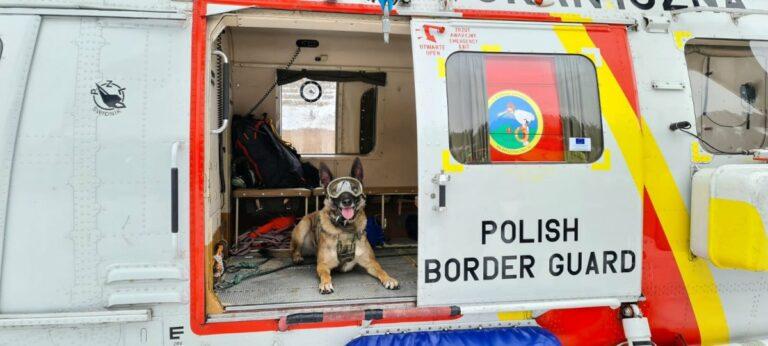 Sokół Anakonda, pies Extreme i podniebne ćwiczenia nad Przehybą