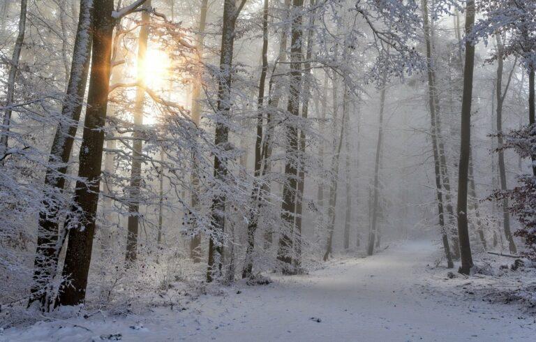 Synoptycy znów ostrzegają przed opadami śniegu