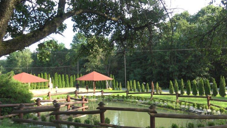 Własny park linowy i karuzela i to nie tylko dla dzieci