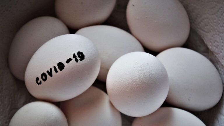 KORONAWIRUS RAPORT – 5 kwietnia. Znów sporo nowych ozdrowieńców w subregionie sądeckim