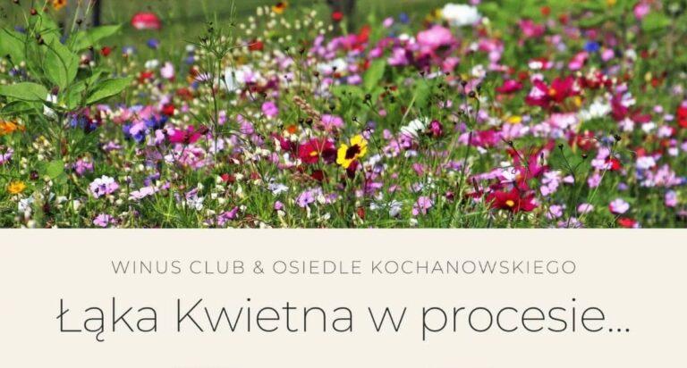 Pierwsza łąka kwietna na osiedlu Kochanowskiego niebawem zacznie kiełkować! Posiał ją Vinus Club