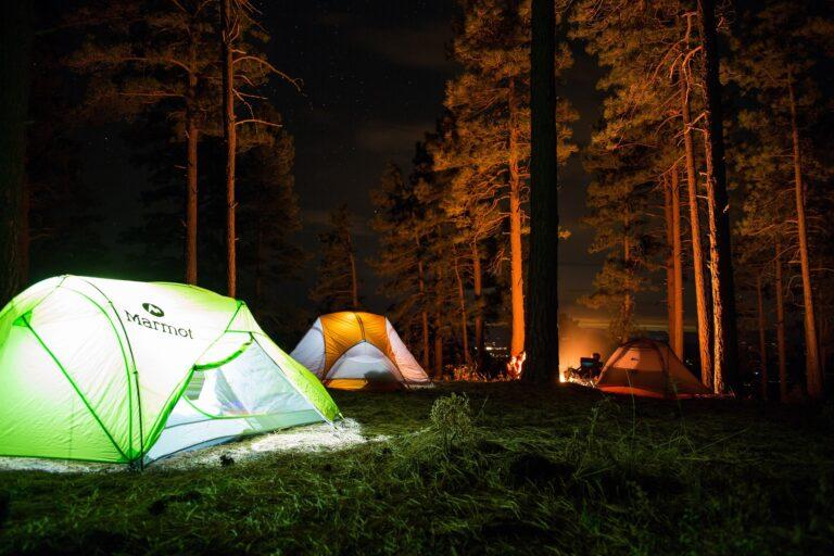 W lasach Beskidu Sądeckiego Niskiego i Wyspowego wyznaczono miejsca do spania. Zobacz gdzie!