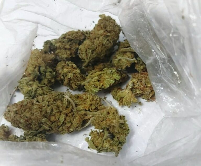 Nowy Sącz. Marihuana w słoikach i w doniczkach