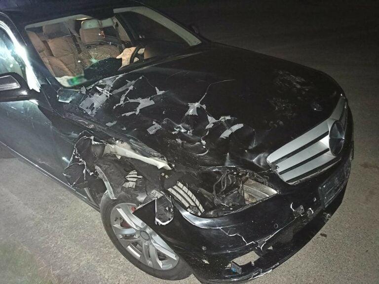 Podegrodzie. Jeleń nie przeżył, samochód uszkodzony