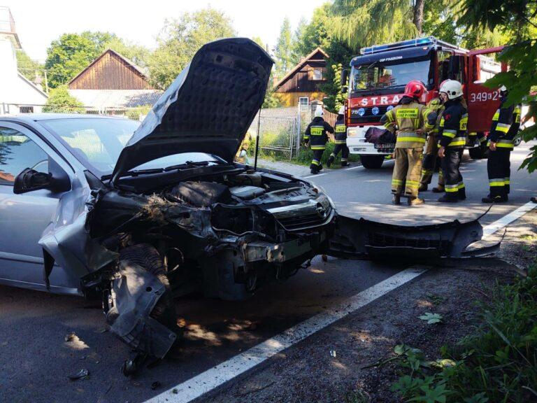 Ptaszkowa. Samochód uderzył w przydrożne drzewo