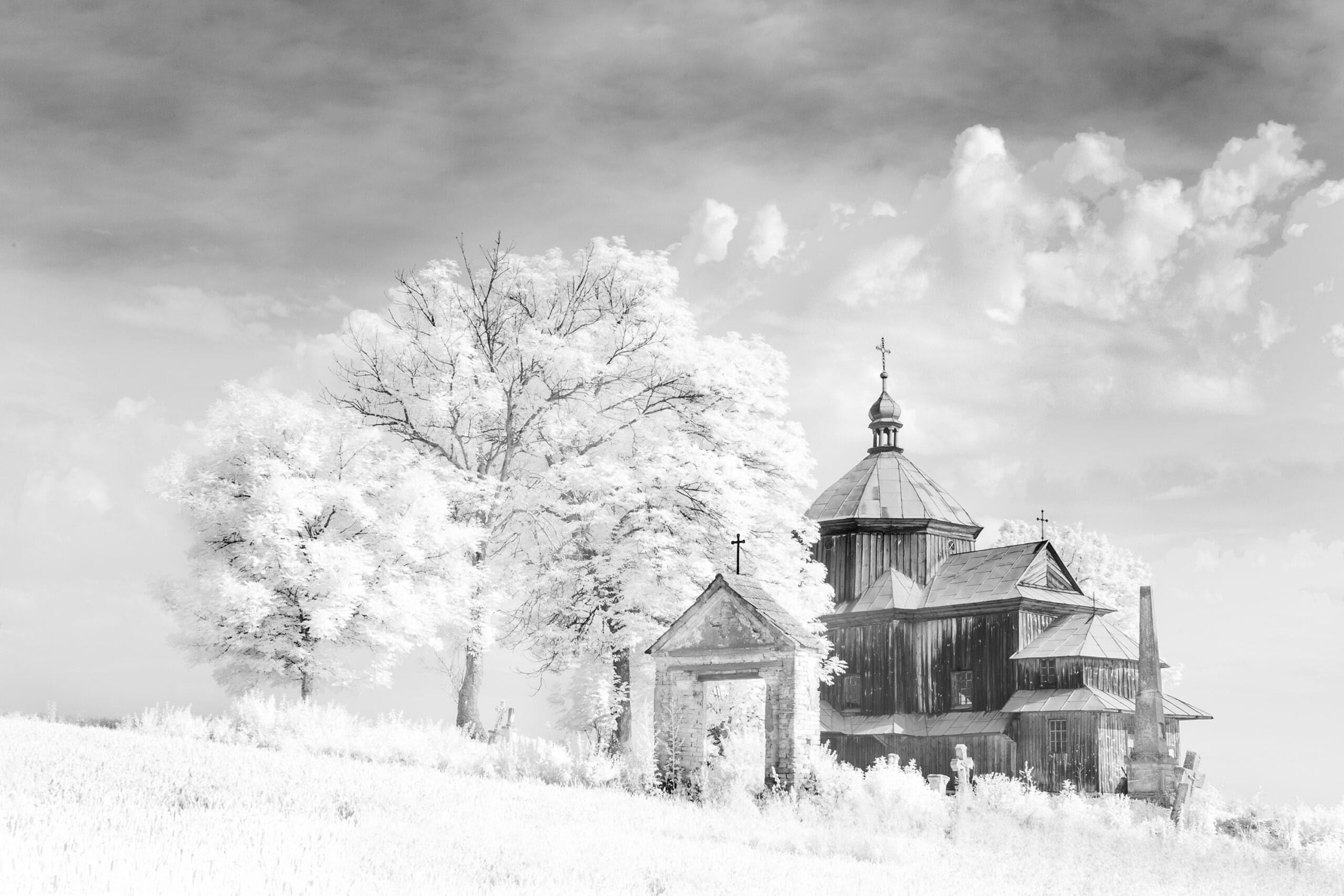 Fot. Alicja Przybyszowska Nowy Sącz