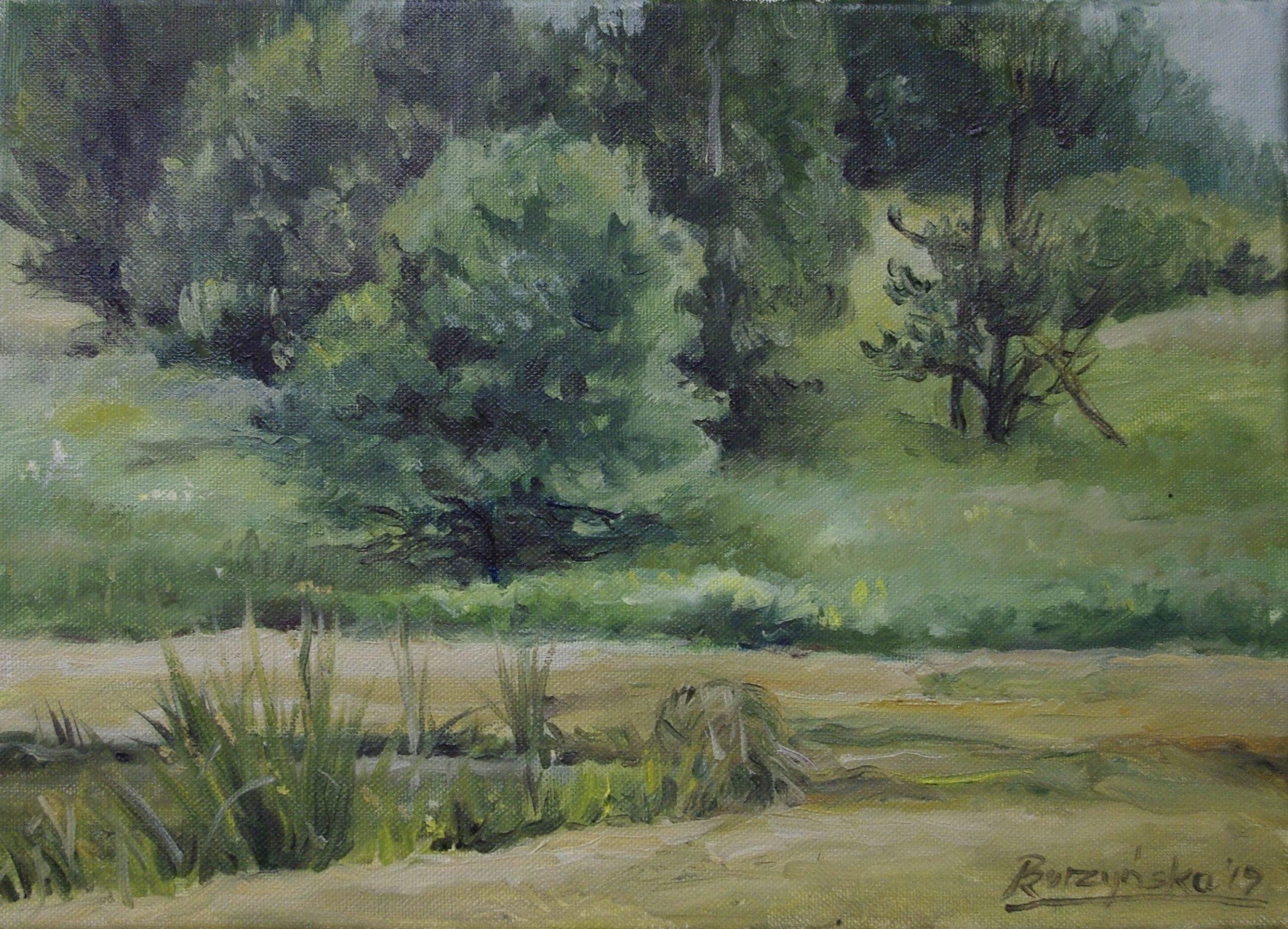 Renata Burzyńska, malarstwo, Stary Sącz