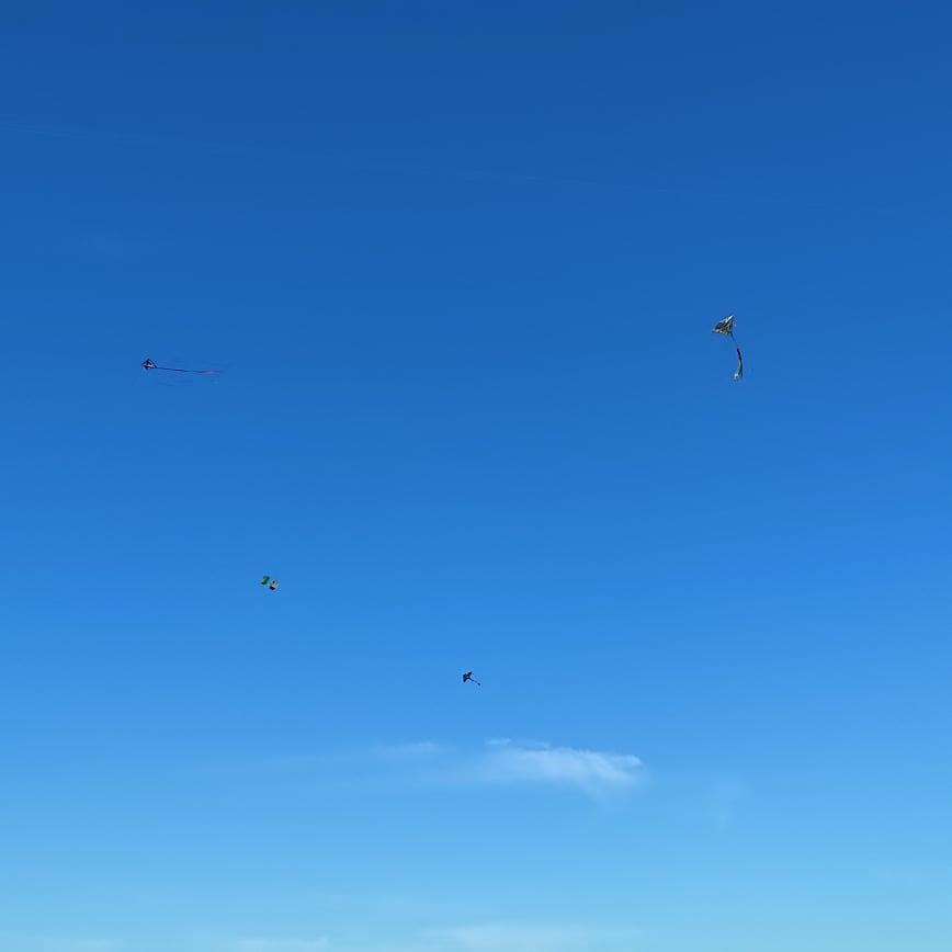 Zawody latawców, Jasienna